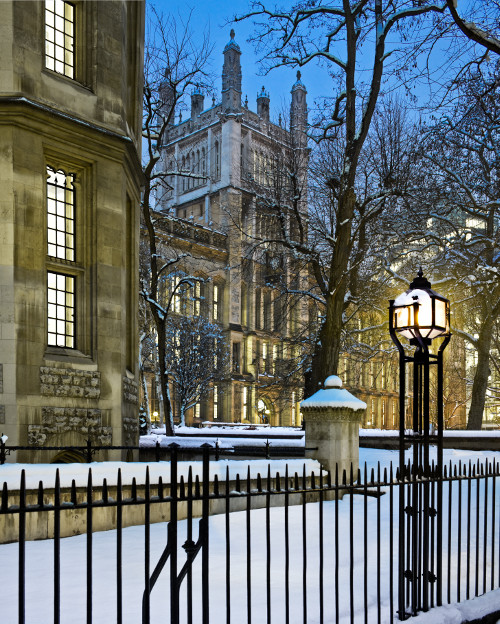 Photograph of Maughan Library, Chancery Lane (KCL), taken in winter.